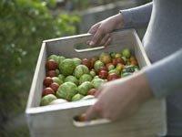 Coma verduras orgánicas locales para ahorrar dinero en su factura de supermercado y conservarse saludable -Mujer cargando una caja de verduras