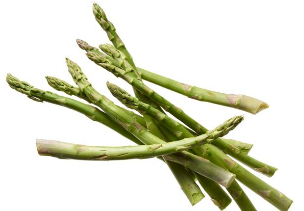 asparagus shot on white