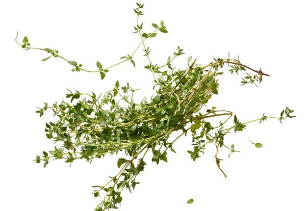 Tomillo - 16 Alimentos para una vida larga y saludable