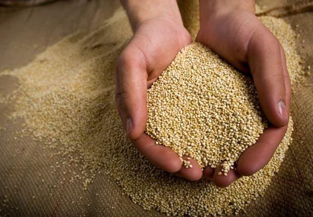 Manos con granos de quinua - Beneficios de la quinoa para la salud
