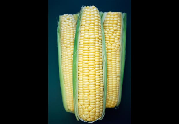 Corn on the Cobb, 10 healthy high calorie foods