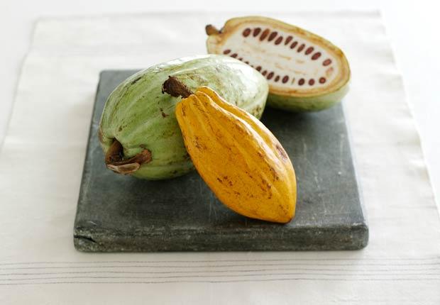 Granos de cacao, Beneficios para la salud de Cacao