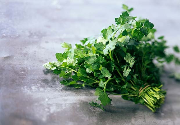 Parsley, 9 Staple Herbs and Spices