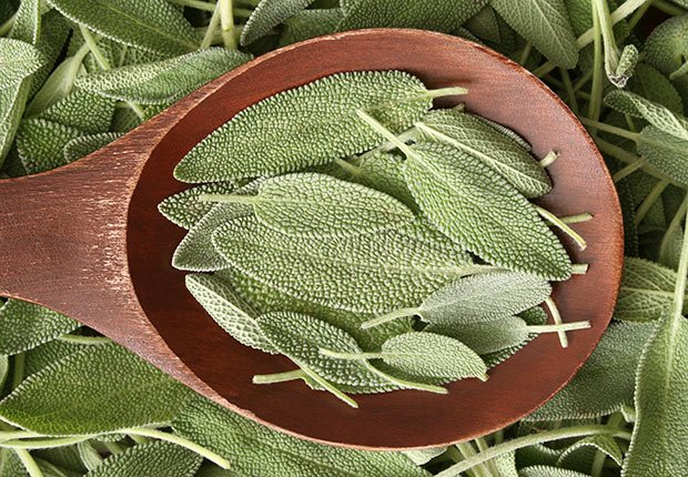 Sage, 9 Staple Herbs and Spices