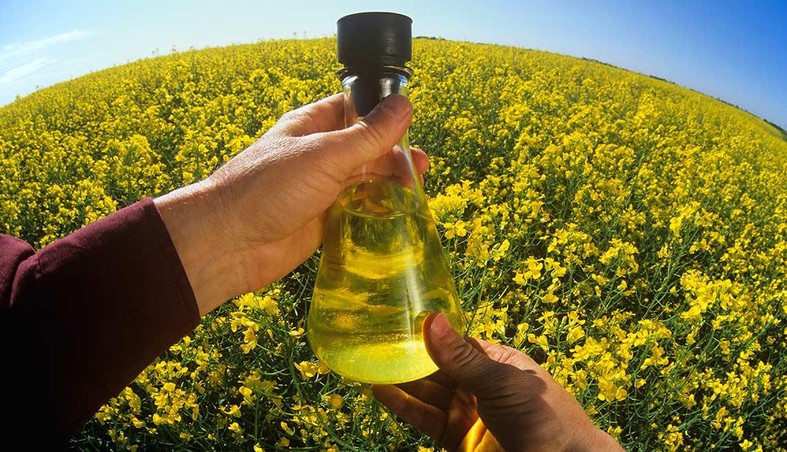 item 3 of Gallery image - 10 tipos de aceite y sus beneficios para la salud