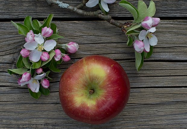 Manzanas Braeburn