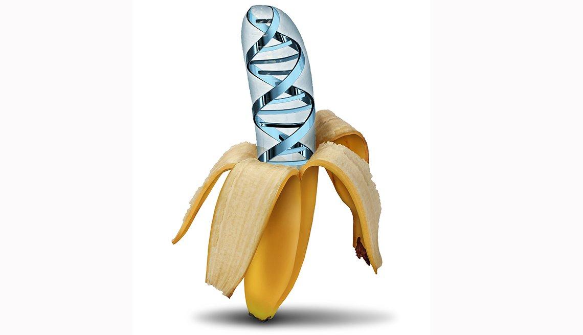 Banana - ADN