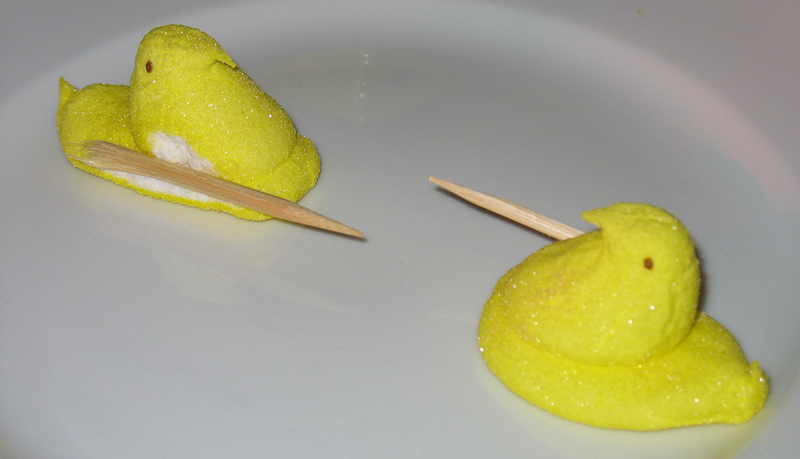 Peeps on a plate, Jousting peeps, Things You Didn't Know About Peeps