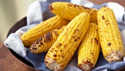 grilled corn placed on a blue napkin in a bowl-vegertarian grilling