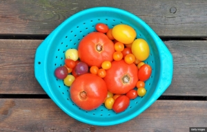 fresh tomatoes recipe recipes tomato collander heirloom cherry yellow aqua summer bowl healthy vegetarian easy (Getty Images)