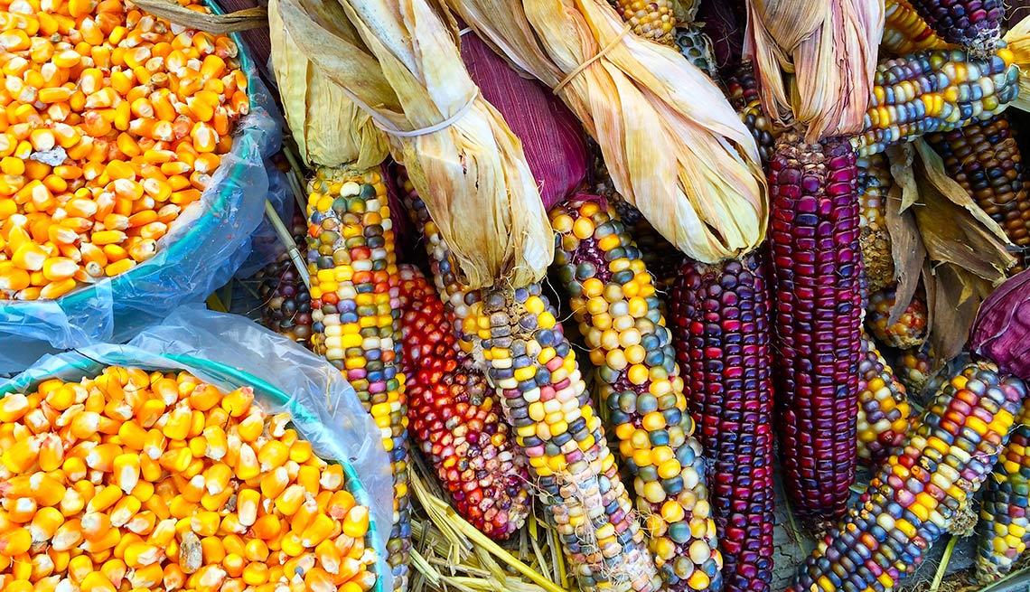 Diferentes clases de maiz y choclo