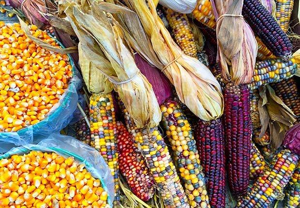 Recetas con sabor peruano