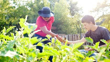 AARP volunteers in community garden in Georgia