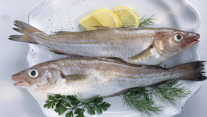Eating baked or broiled fish - not fried - weekly may improve brain health and reduce the risk of developing mild cognitive impairment and Alzheimer's disease - image of raw fish