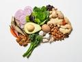 Grupo de distintos alimentos colocados en forma de cerebro