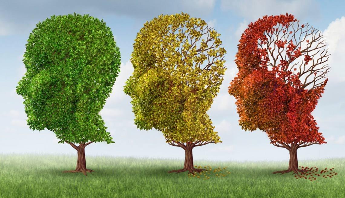 Brain Aging & dementia