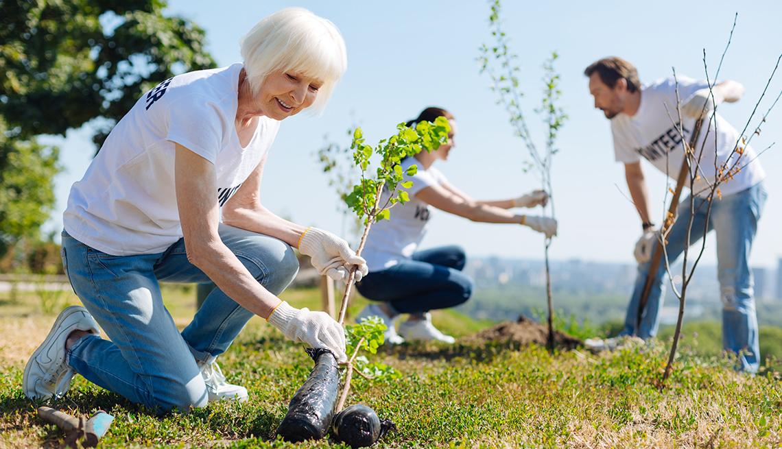 Mature woman planting a tree