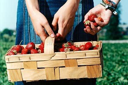 Una canasta de fresas: las fresas pueden ayudar a aclarar su sonrisa