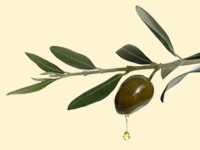 Olive oil has many health benefits.