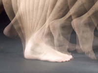 Multi-exposure image of feet - a walking skills program improves physical function in people who have had hip replacement surgery for osteoarthritis