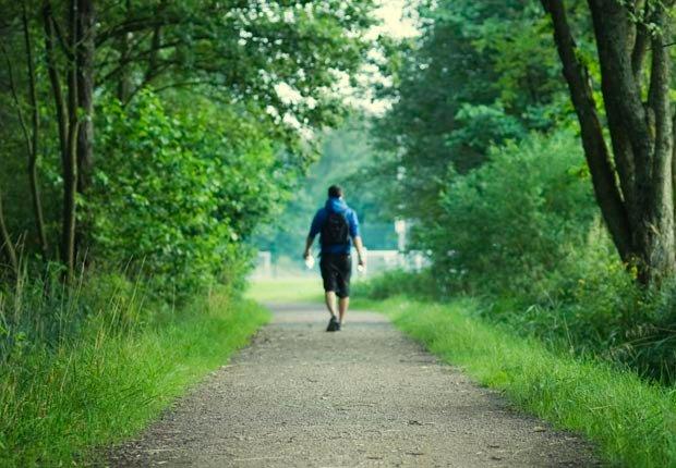 Man walking on path in woods