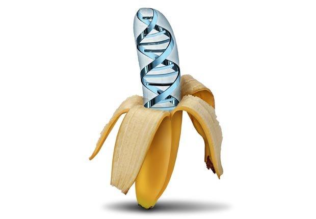 Banano - Mitos y realidades sobre el cáncer y las dietas