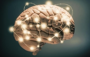 Grafico de un cerebro - Investigación sobre la salud cerebral