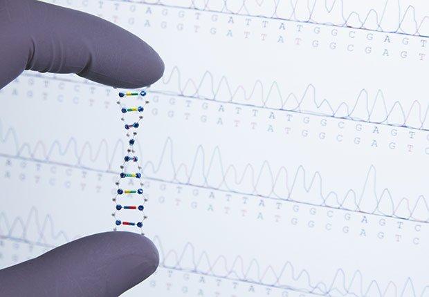 Estudios geneticos - Pérdida auditiva por ruido