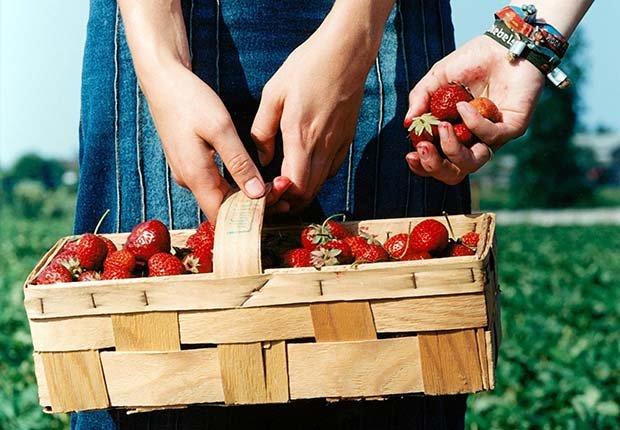 Mujer con una canasta de fresas