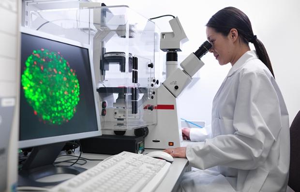 Científica estudiando células madre