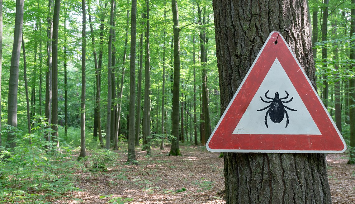 Tick warning sign in wooded area