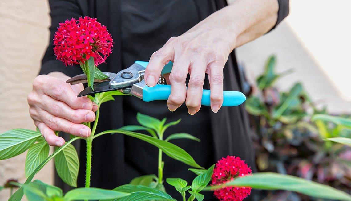 Mujer cuidando su jardín