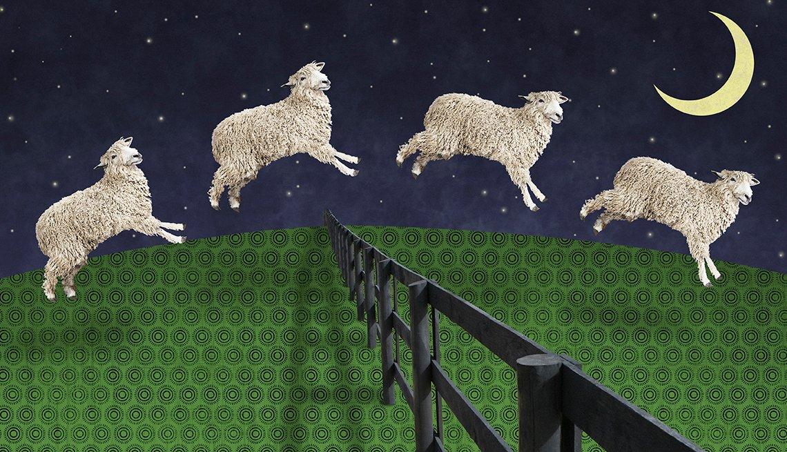 Insomnia/Counting Sheep