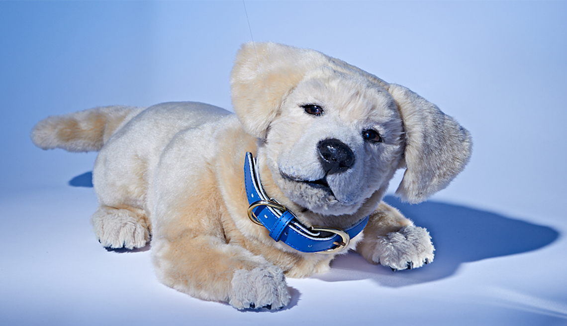 Jennie, the robot companion dog