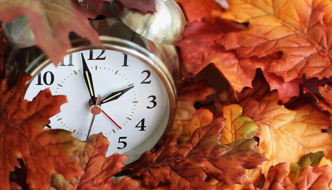 alarm clock in leaves