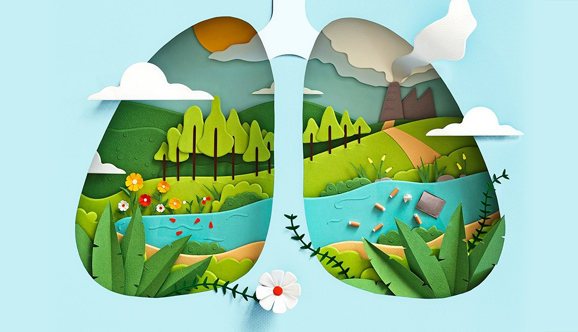 cut paper style illustration of lungs as an outdoor landscape lone is clean and the other is dirty