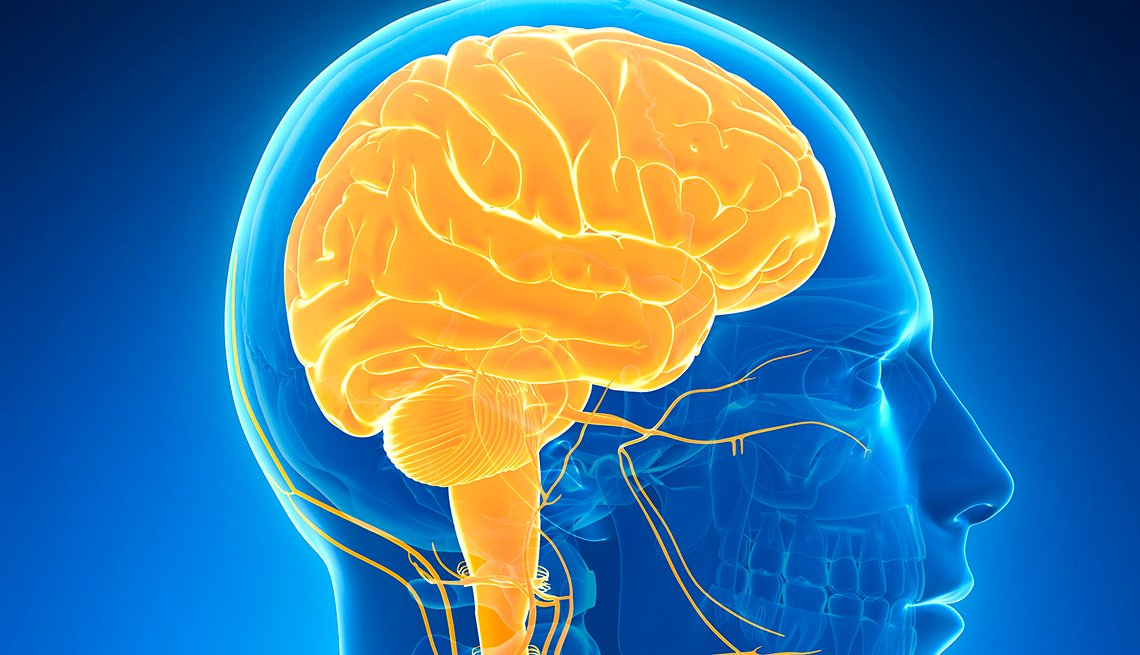 illustration of the human brain highlighted in gold against an all blue background