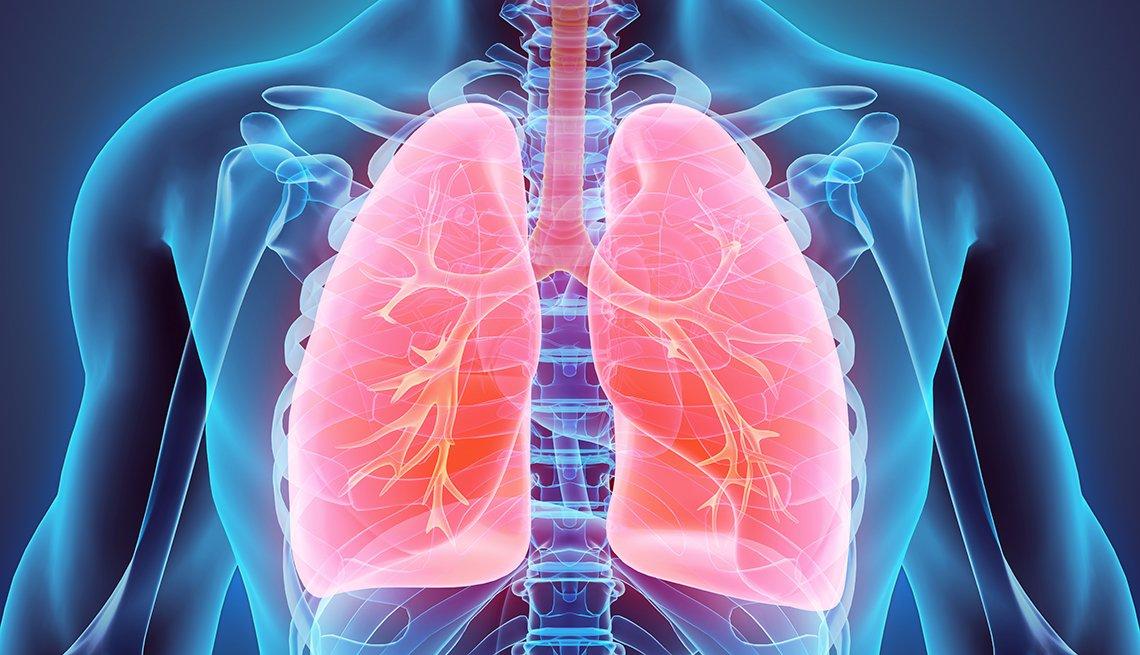Ilustración de una persona donde se destacan los pulmones