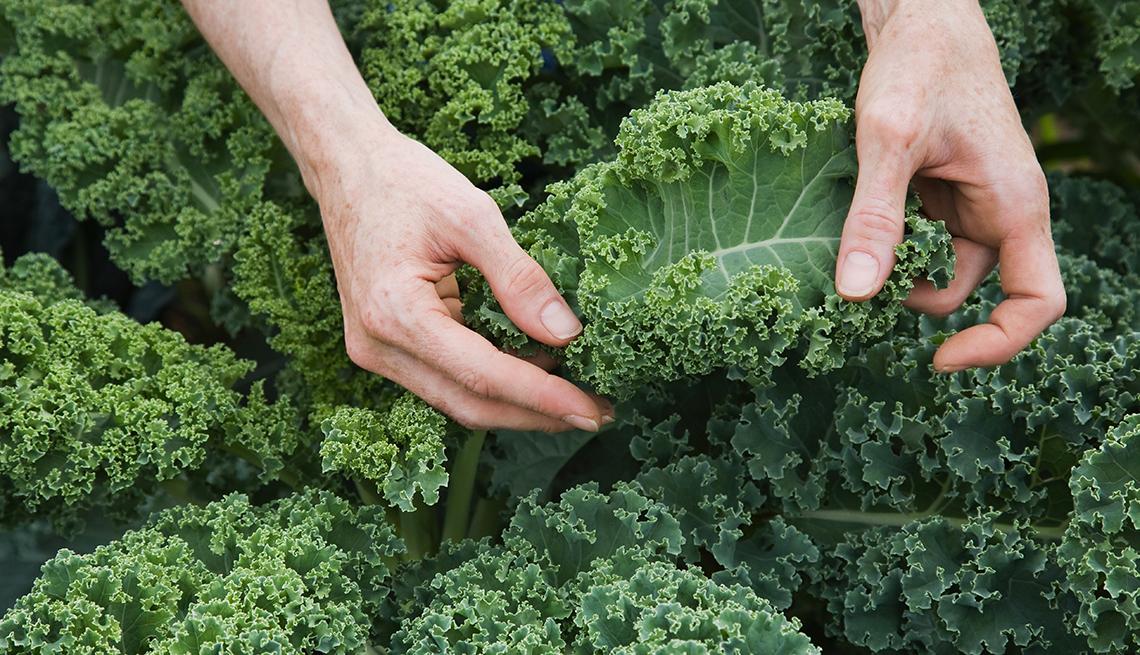 item 9 of Gallery image - Hands sorting kale