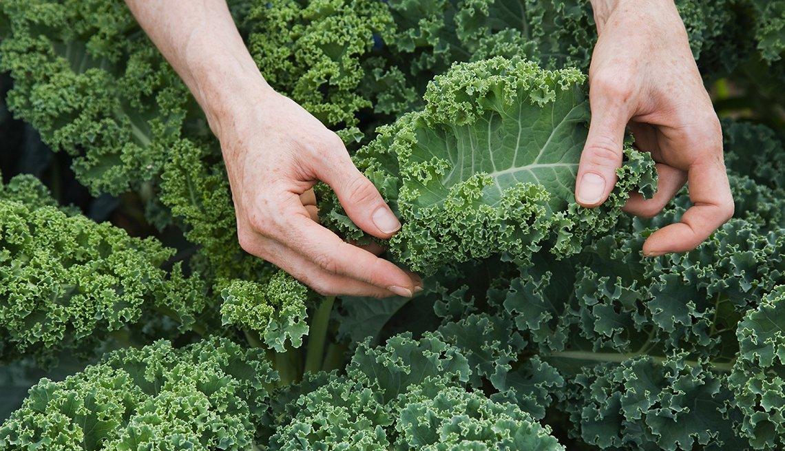 item 9 of Gallery image - Hands sorting kale