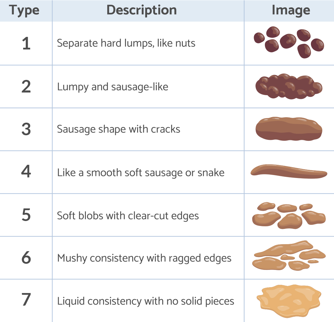 the bristol stool chart shows what the different types of poop look like in shape and color