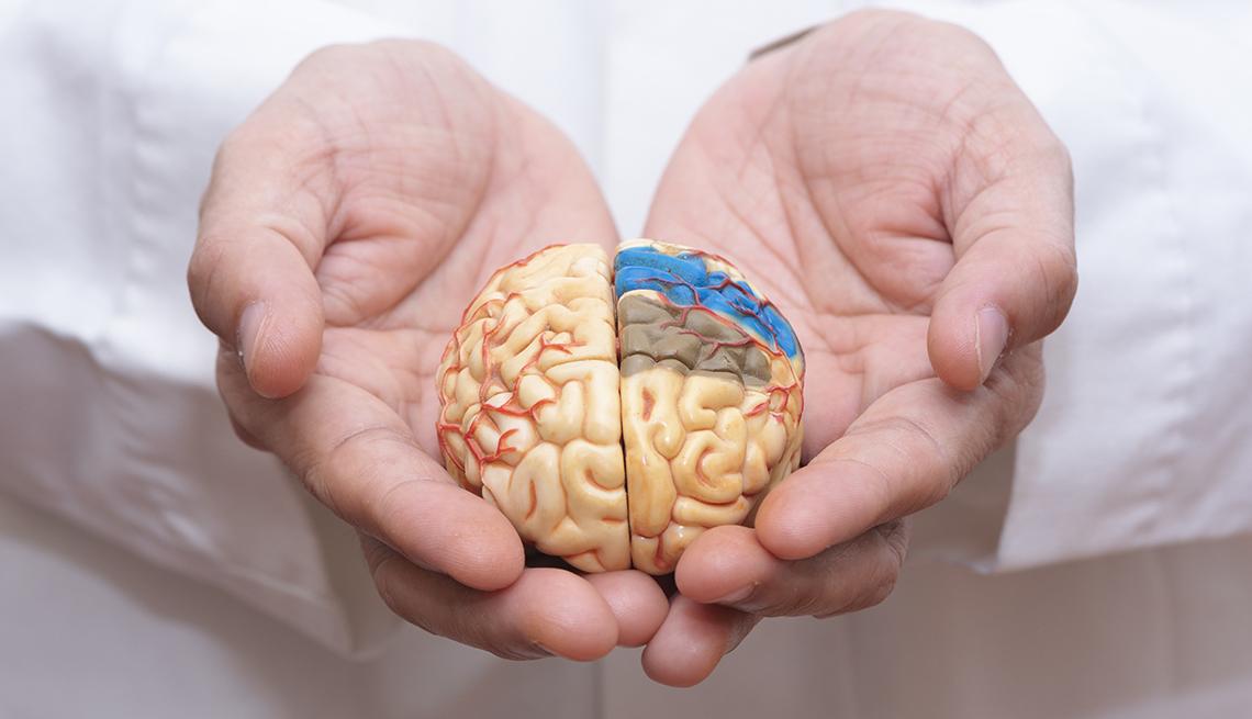 alzheimers presentation ideas