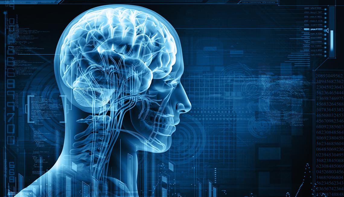 Readiografía de la cabeza de una persona