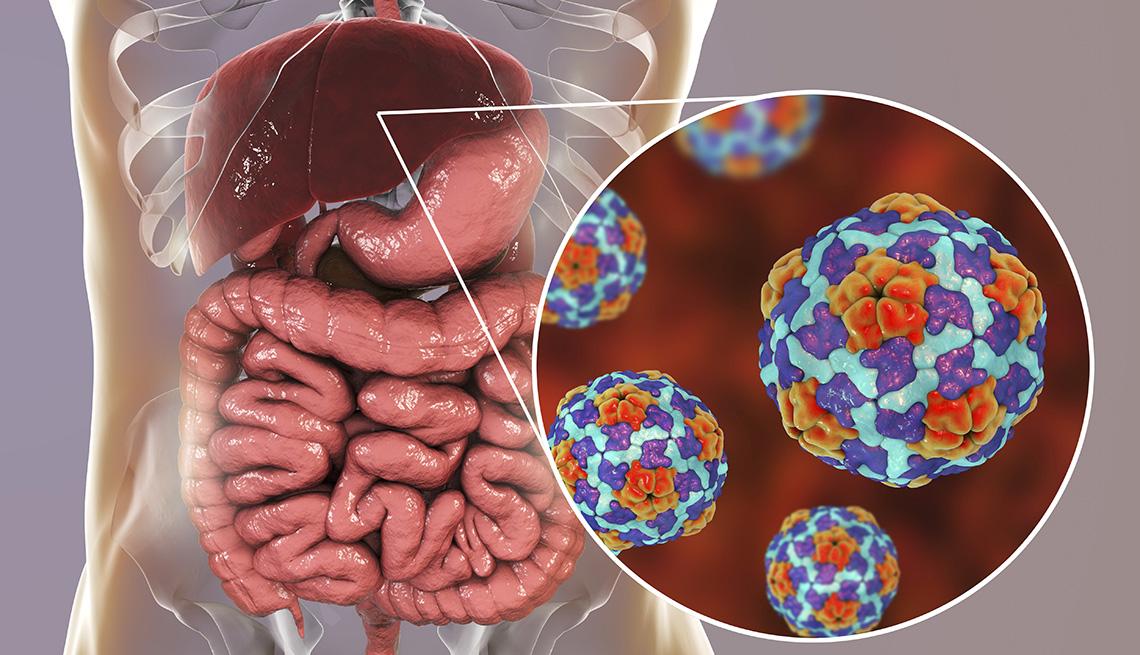 Protégete contra la infección de Hepatitis A