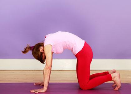 cat yoga pose