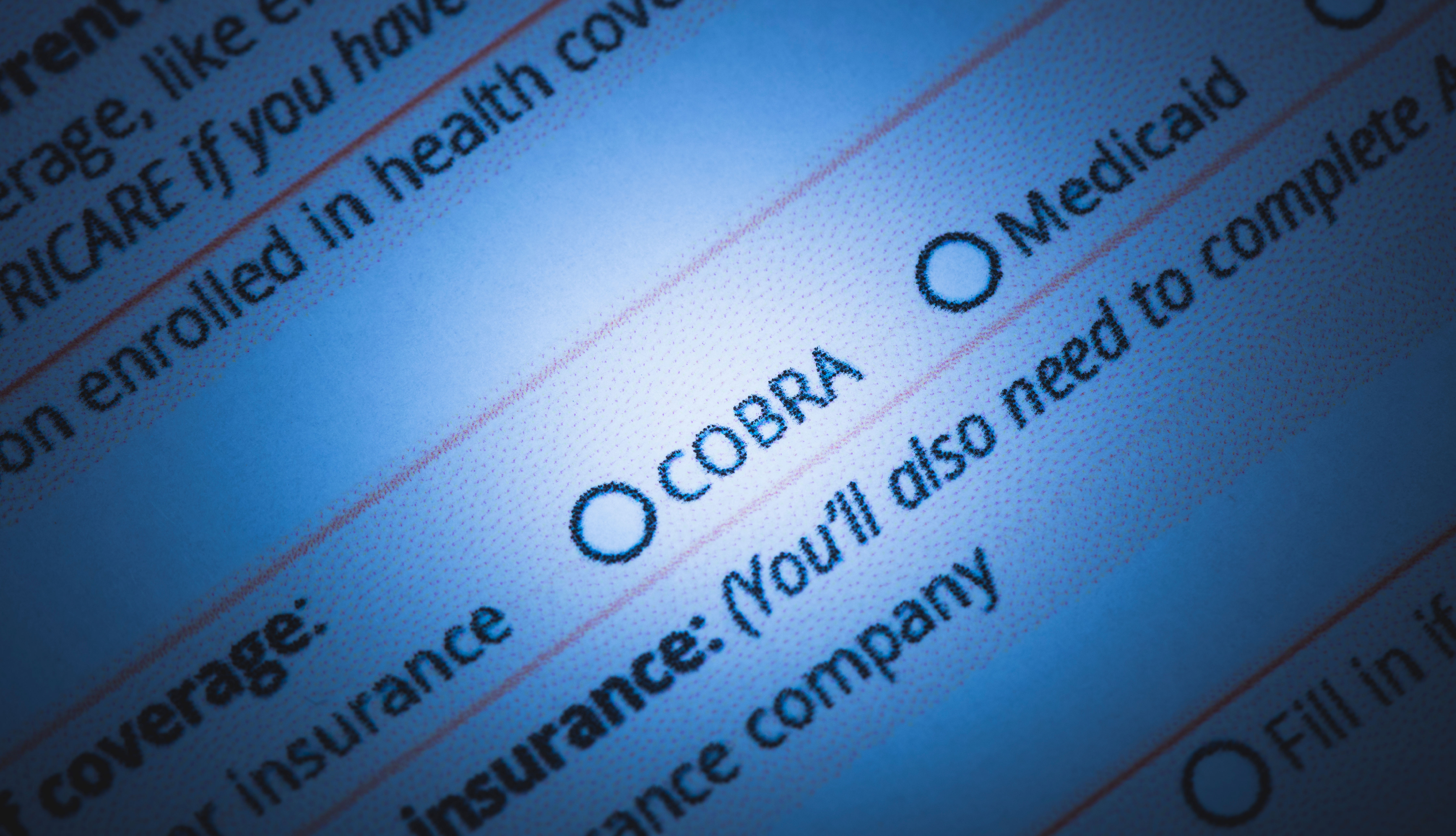 close shot of electronic health insurance application form featuring the word cobra