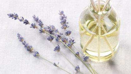 lavender sprigs and lavender oil