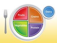 El plato de comida saludable sugerido por el Departamento de Agricultura de los Estados Unidos de América (USDA)