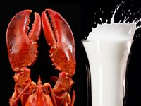 Lobster and milk both have fats, just different kinds.