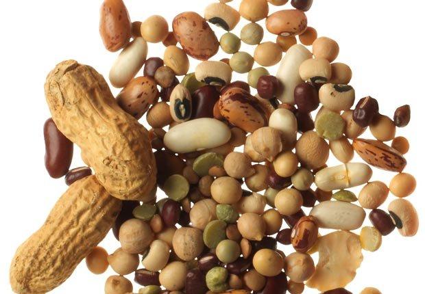 5 Gran alimentos que ayudan estimulación inmunológica - cacahuetes, lentejas, soja temporada de gripe
